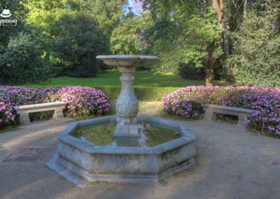 160821017312EOS 100DAnd2more 400x284 - Photowalk: Visita al Parque del Capricho