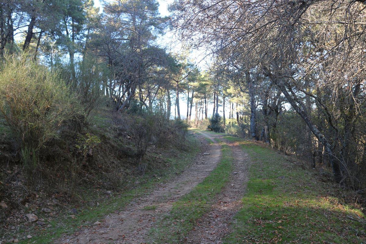 buitrago 4 - Excursión a Buitrago y embalse de Puentes Viejas