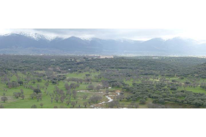 senda mirador e1507546578882 - Excursión y visita al soto y palacio de Riofrío